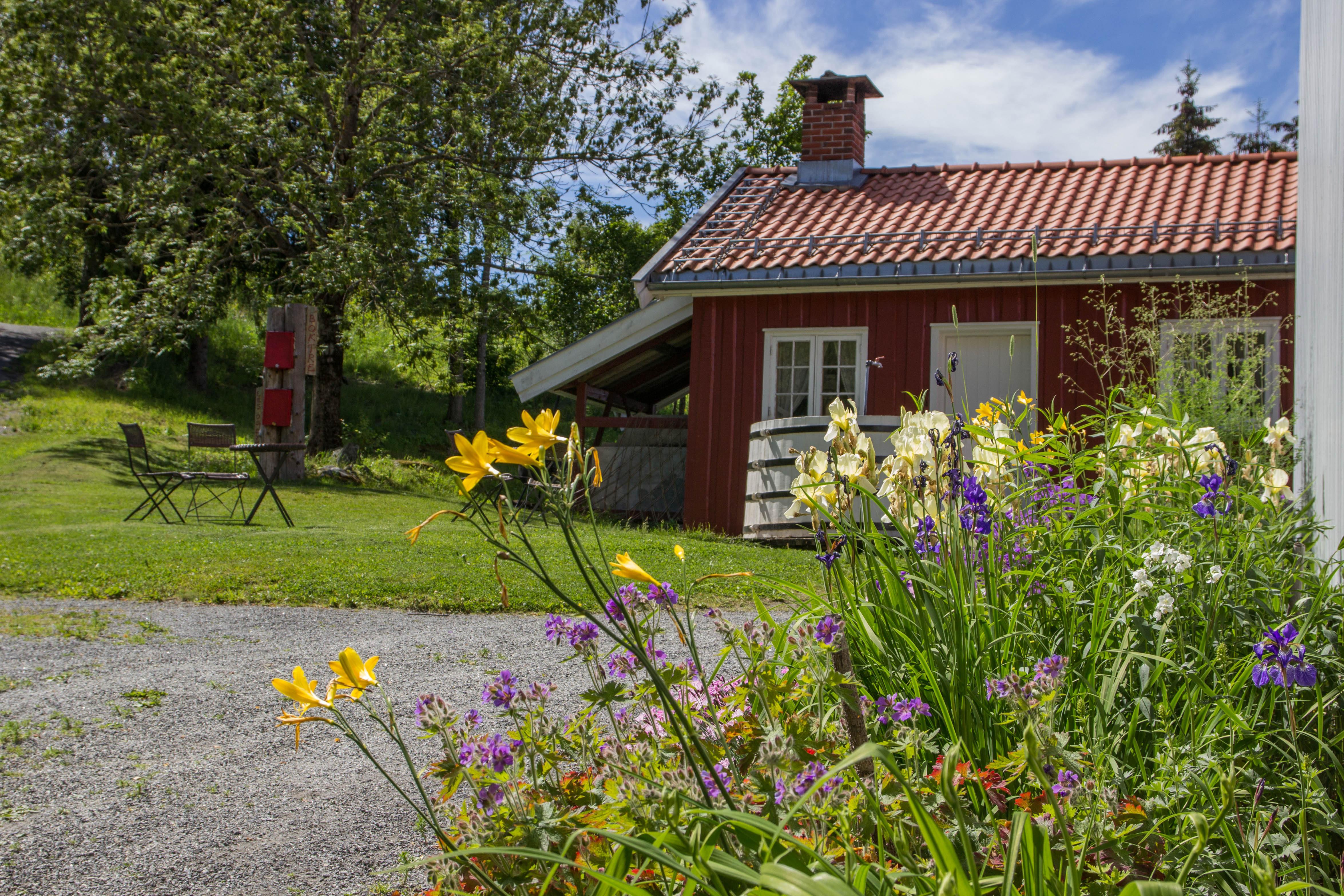 Portåsen_blomster-på-Portåsen-1-4699x3133_c